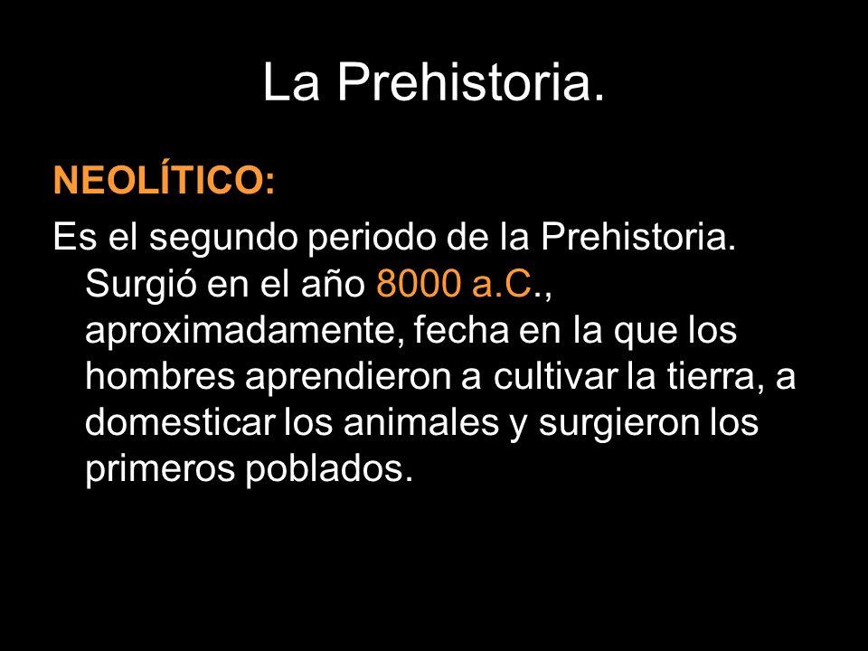 La Prehistoria. NEOLÍTICO: