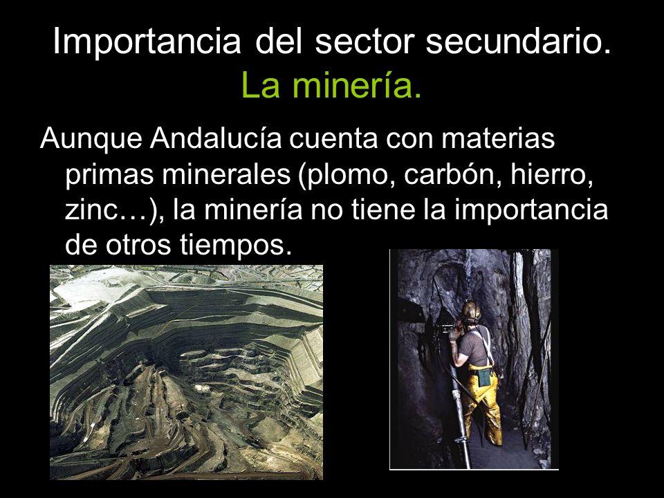 Importancia del sector secundario. La minería.