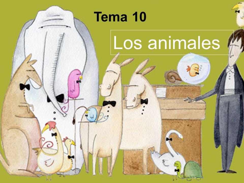 Tema 10 Los animales