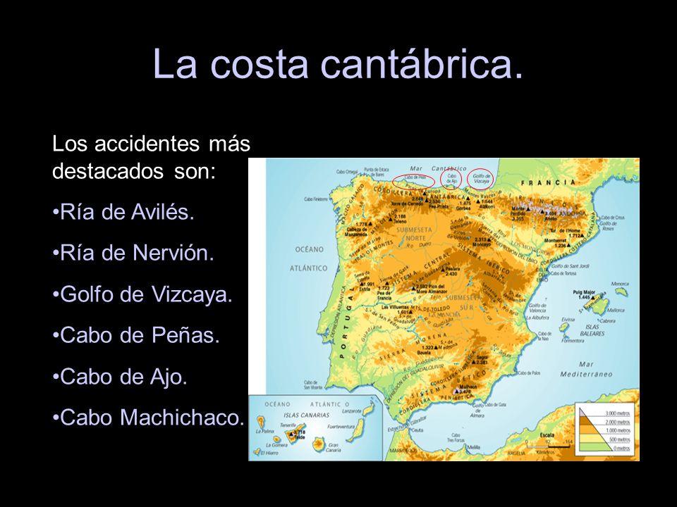 La costa cantábrica. Los accidentes más destacados son: Ría de Avilés.