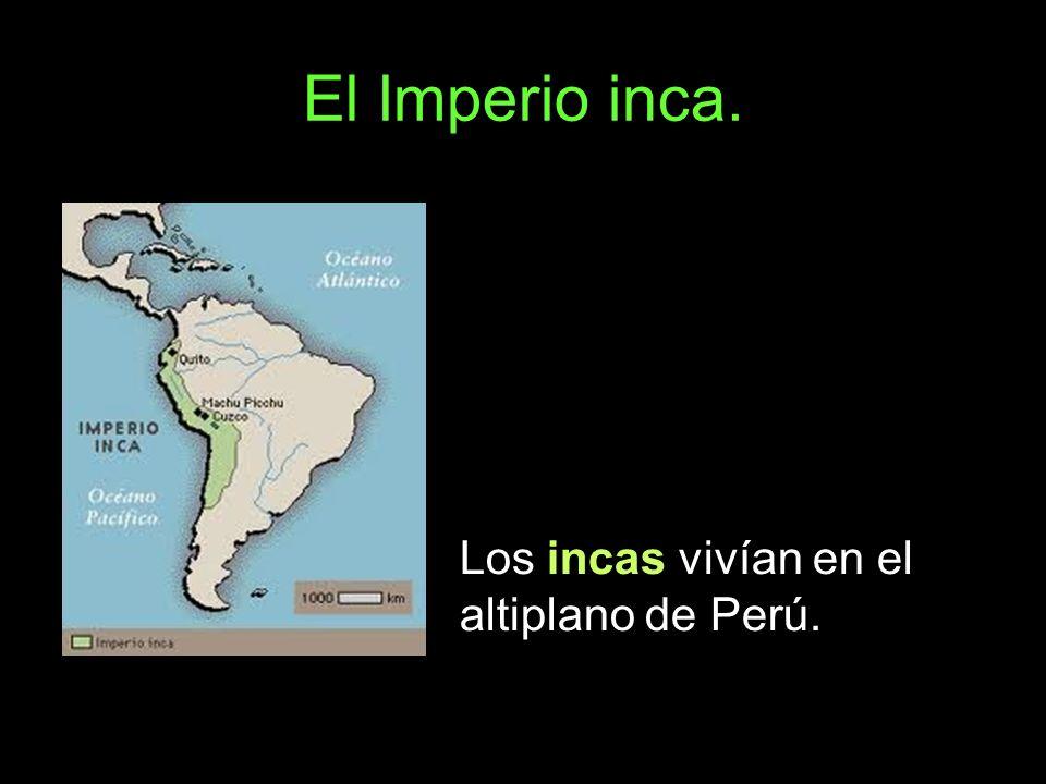 El Imperio inca. Los incas vivían en el altiplano de Perú.