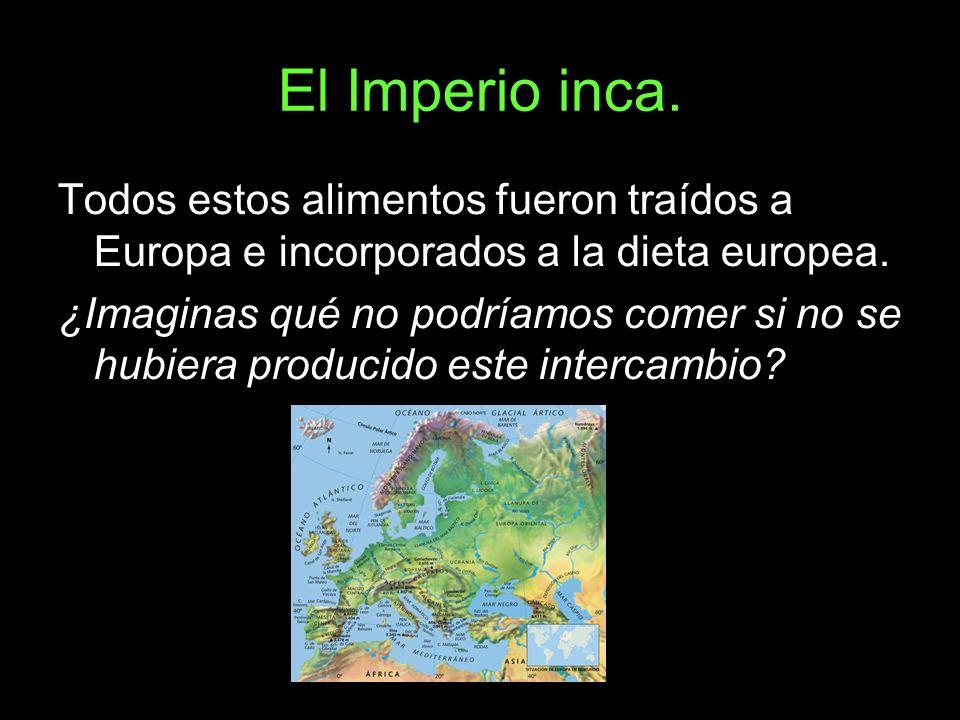 El Imperio inca. Todos estos alimentos fueron traídos a Europa e incorporados a la dieta europea.