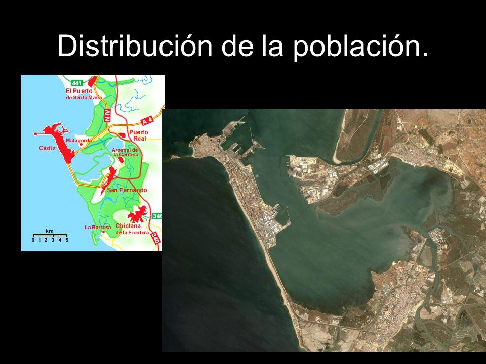 Distribución de la población.