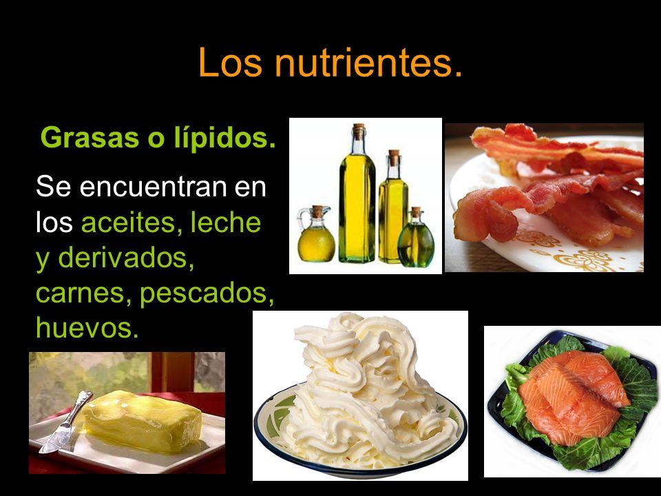 Los nutrientes. Grasas o lípidos.