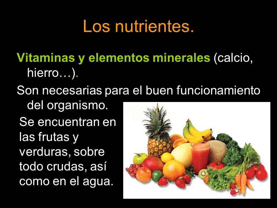 Los nutrientes. Vitaminas y elementos minerales (calcio, hierro…).