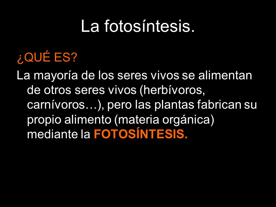 La fotosíntesis. ¿QUÉ ES