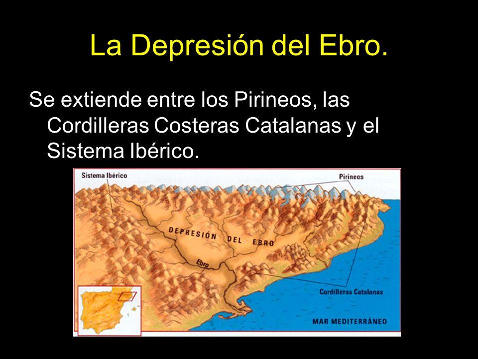La Depresión del Ebro.Se extiende entre los Pirineos, las Cordilleras Costeras Catalanas y el Sistema Ibérico.