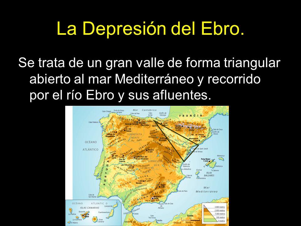 La Depresión del Ebro.Se trata de un gran valle de forma triangular abierto al mar Mediterráneo y recorrido por el río Ebro y sus afluentes.
