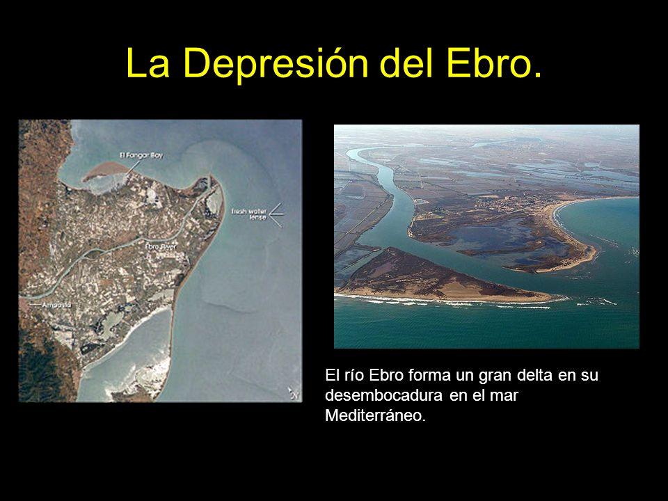 La Depresión del Ebro. El río Ebro forma un gran delta en su desembocadura en el mar Mediterráneo.