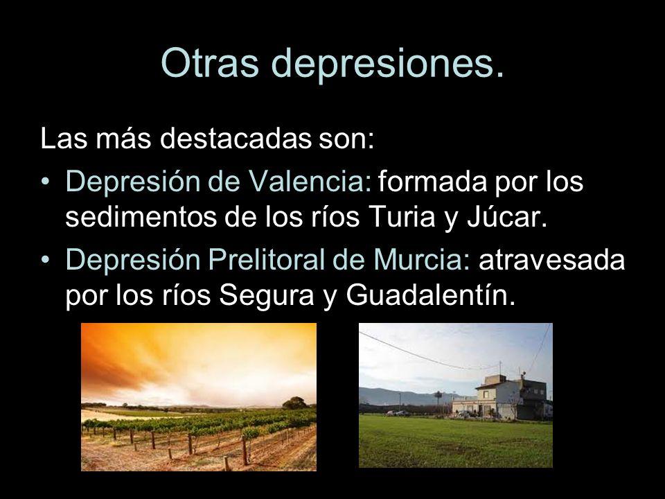 Otras depresiones. Las más destacadas son: