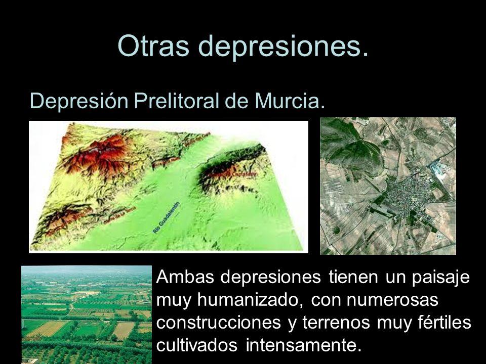 Otras depresiones. Depresión Prelitoral de Murcia.