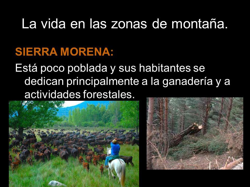 La vida en las zonas de montaña.