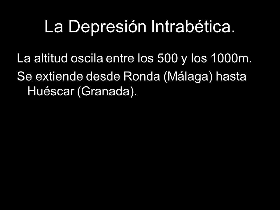 La Depresión Intrabética.