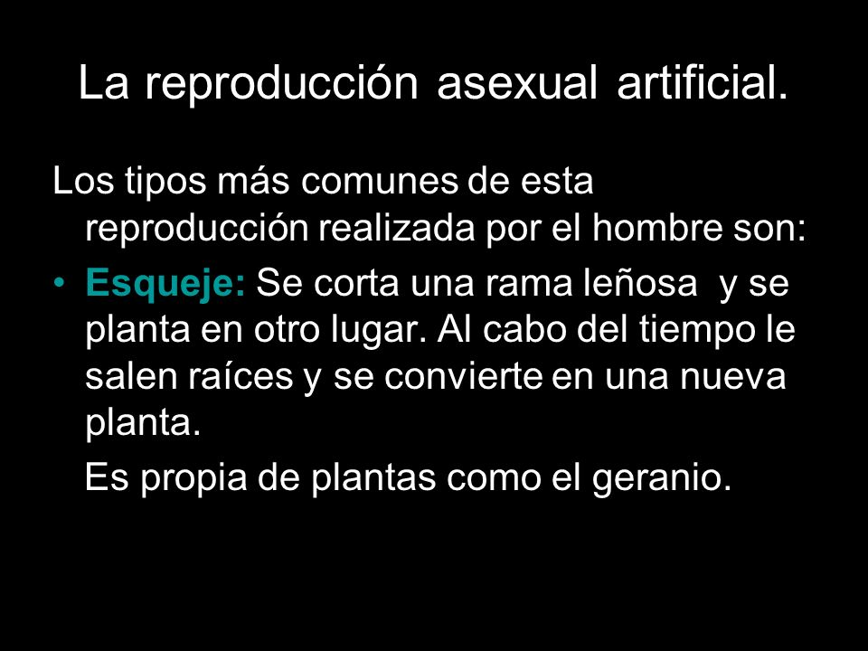 La reproducción asexual artificial.