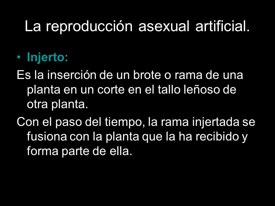 La reproducción asexual artificial.