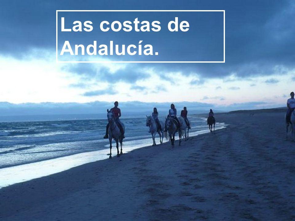 Las costas de Andalucía.