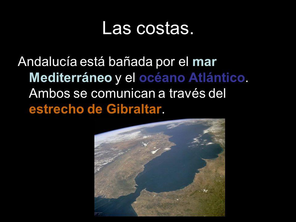 Las costas. Andalucía está bañada por el mar Mediterráneo y el océano Atlántico.