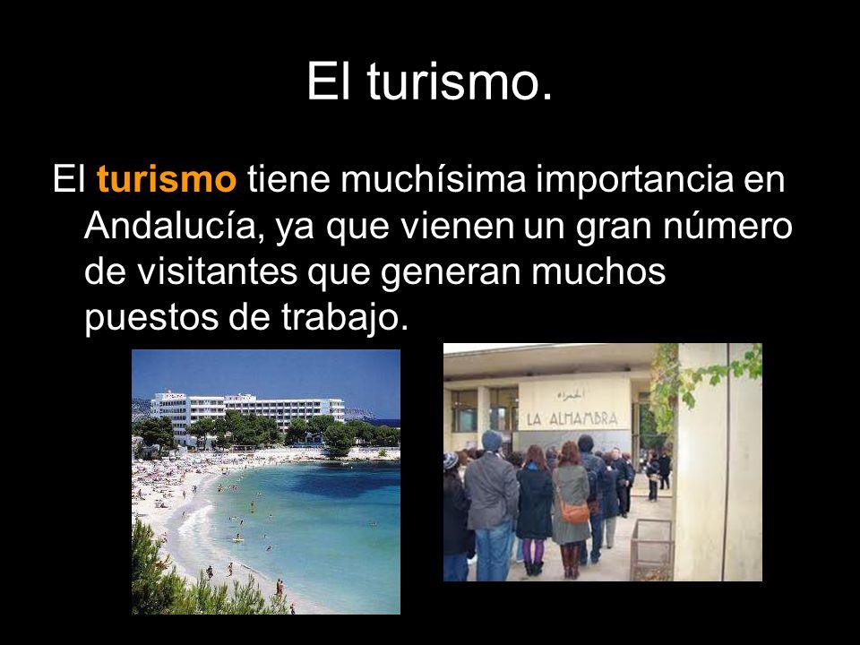 El turismo.El turismo tiene muchísima importancia en Andalucía, ya que vienen un gran número de visitantes que generan muchos puestos de trabajo.