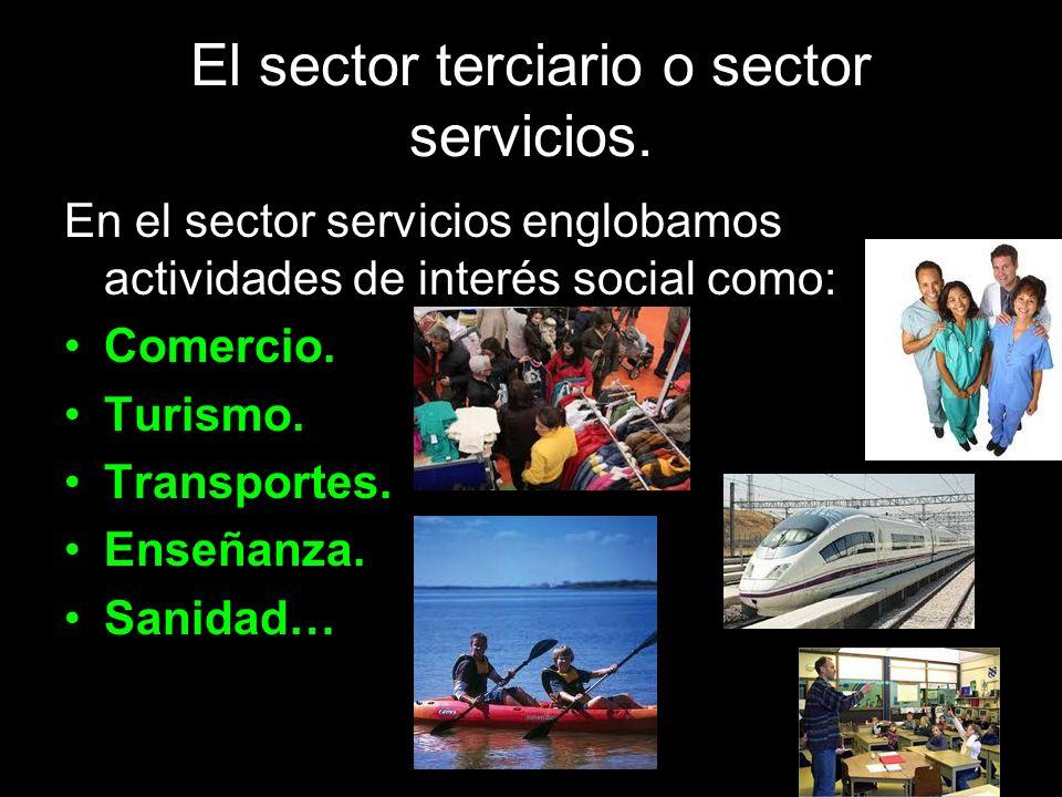 El sector terciario o sector servicios.
