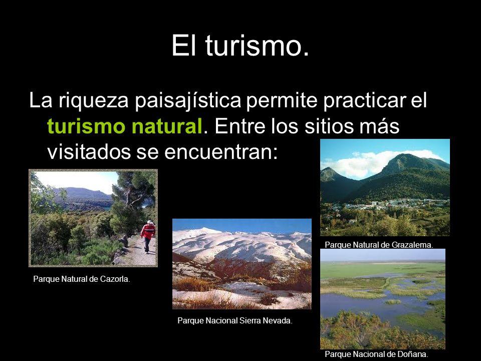 El turismo. La riqueza paisajística permite practicar el turismo natural. Entre los sitios más visitados se encuentran: