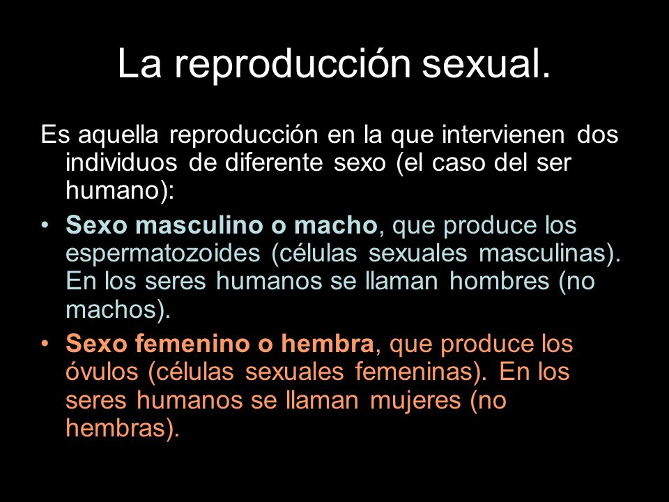 La reproducción sexual.