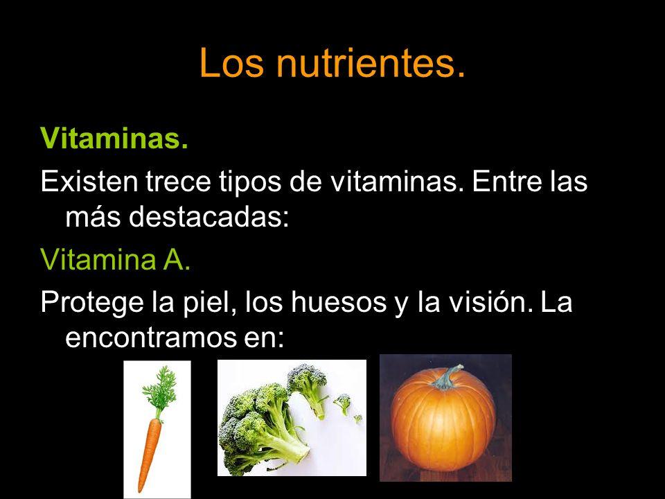 Los nutrientes. Vitaminas.