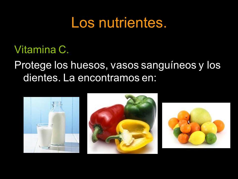 Los nutrientes. Vitamina C.