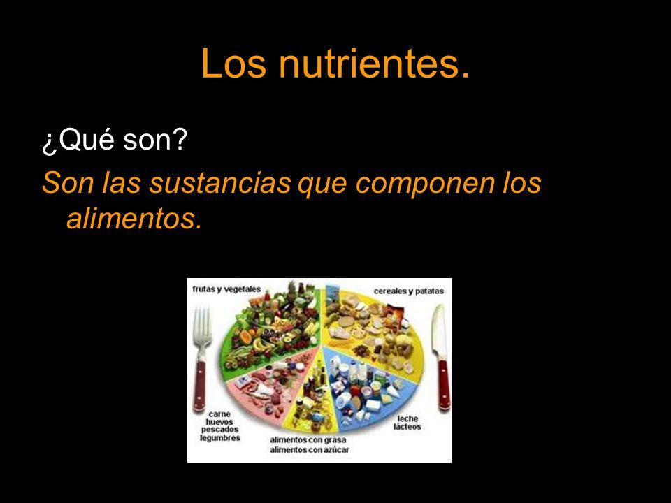 Los nutrientes. ¿Qué son