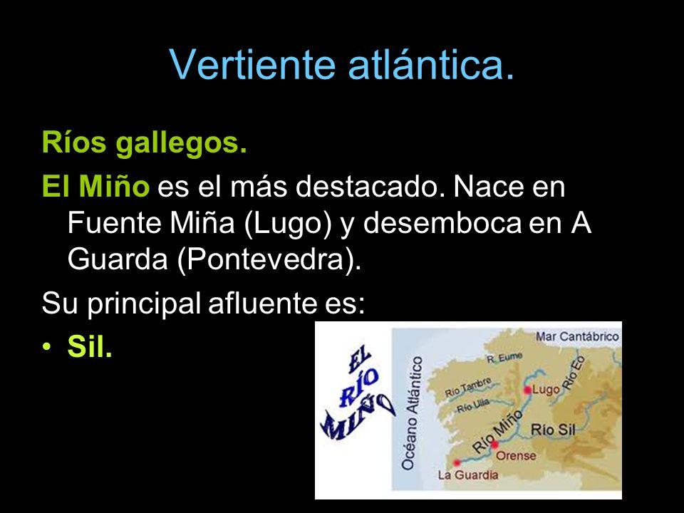Vertiente atlántica. Ríos gallegos.