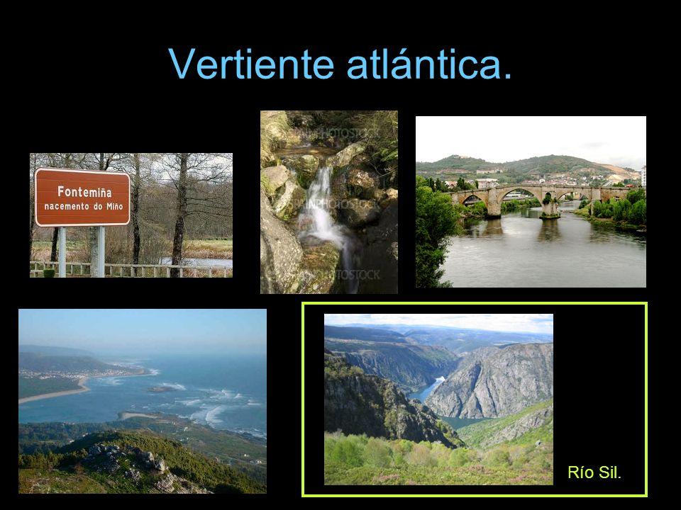 Vertiente atlántica. Río Sil.