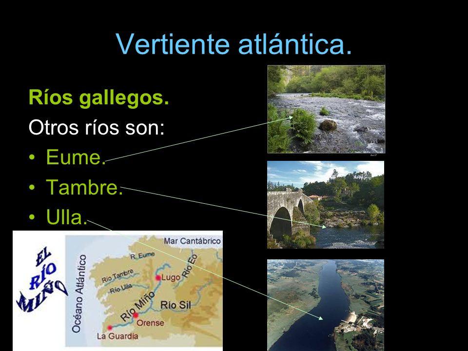 Vertiente atlántica. Ríos gallegos. Otros ríos son: Eume. Tambre.