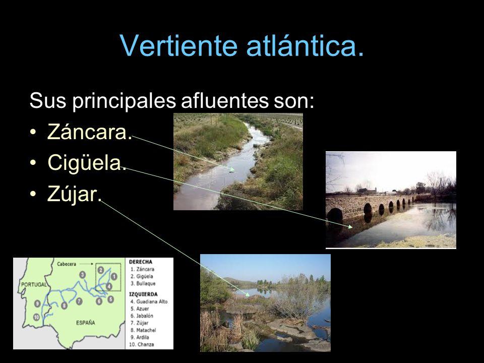 Vertiente atlántica. Sus principales afluentes son: Záncara. Cigüela.