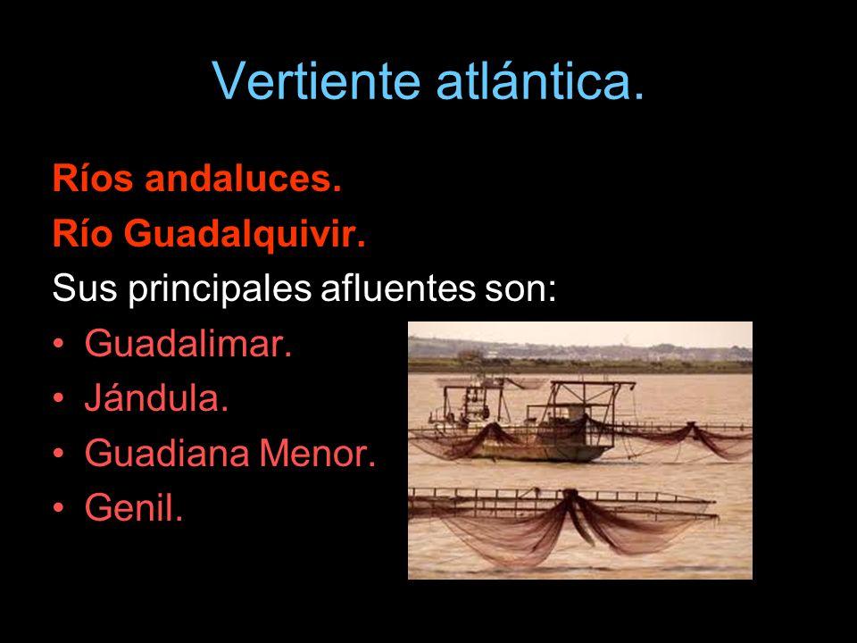 Vertiente atlántica. Ríos andaluces. Río Guadalquivir.