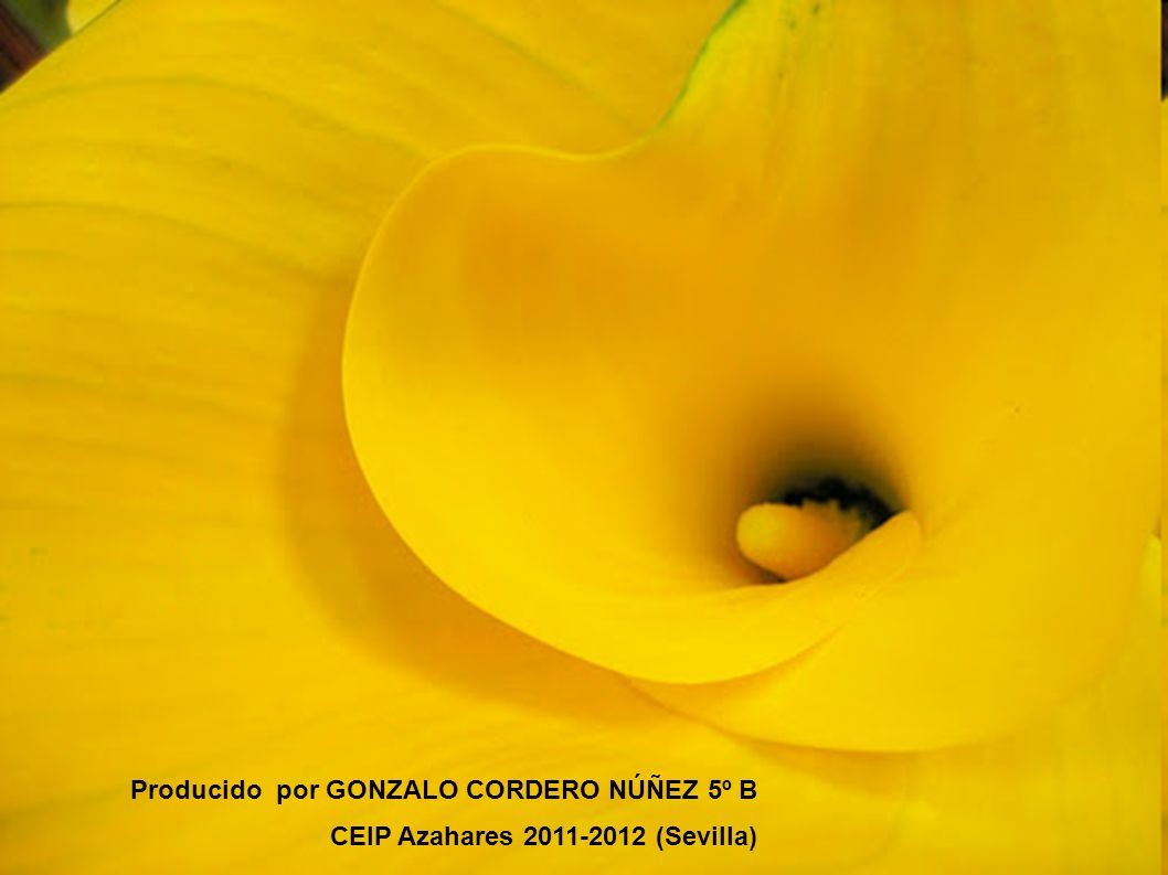 Producido por GONZALO CORDERO NÚÑEZ 5º B