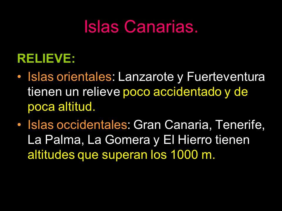 Islas Canarias. RELIEVE: