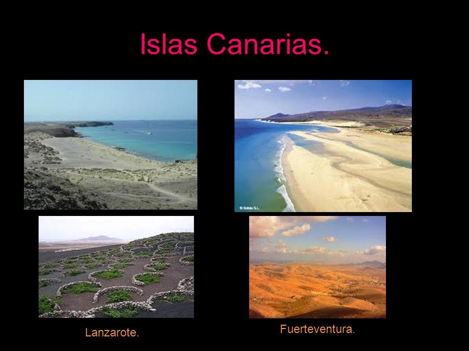 Islas Canarias. Fuerteventura. Lanzarote.