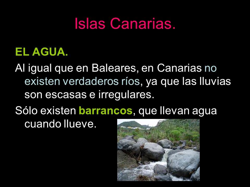 Islas Canarias.EL AGUA. Al igual que en Baleares, en Canarias no existen verdaderos ríos, ya que las lluvias son escasas e irregulares.