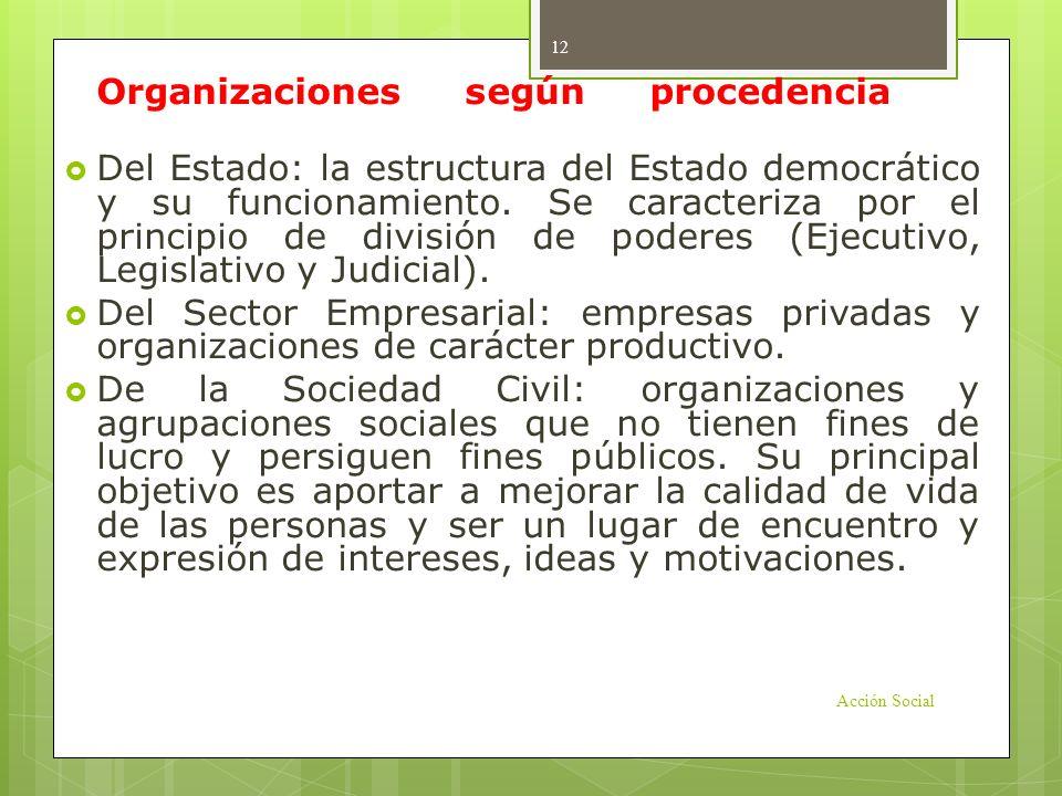 Organizaciones según procedencia o función: