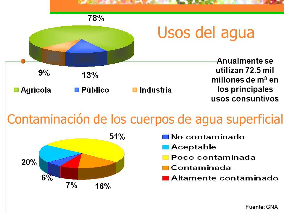 Usos del agua Contaminación de los cuerpos de agua superficial