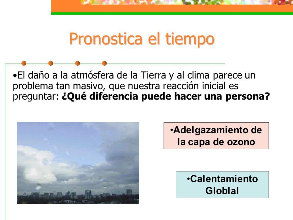 Adelgazamiento de la capa de ozono Calentamiento Globlal