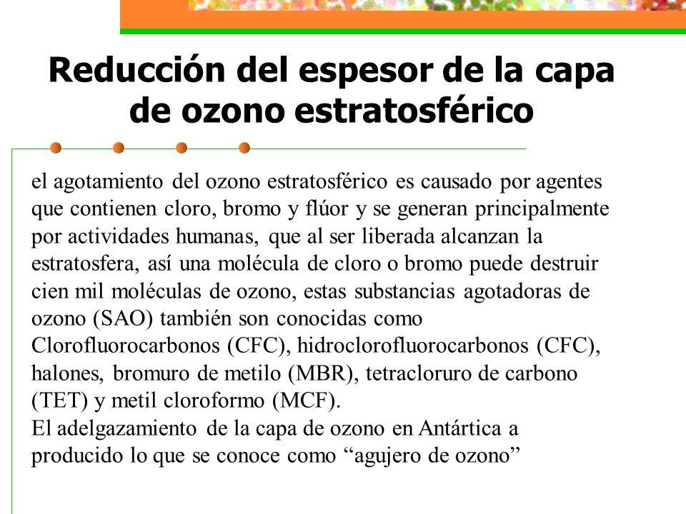 Reducción del espesor de la capa de ozono estratosférico