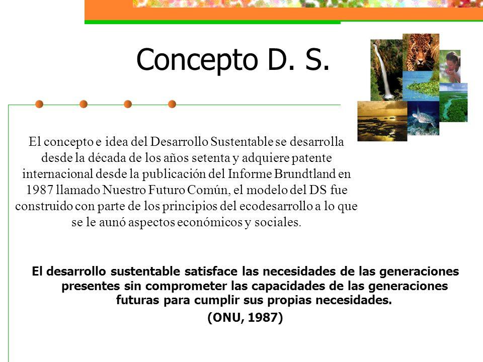 Concepto D. S.