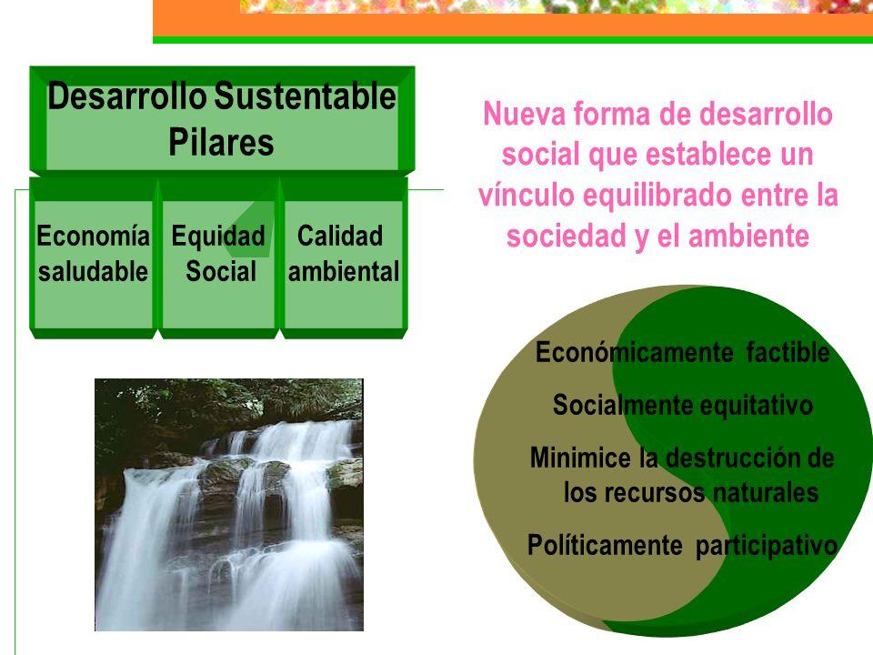Desarrollo Sustentable Pilares