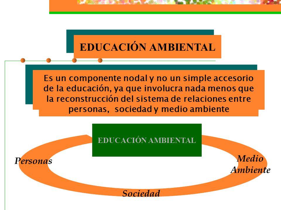 EDUCACIÓN AMBIENTAL Medio Ambiente Personas Sociedad