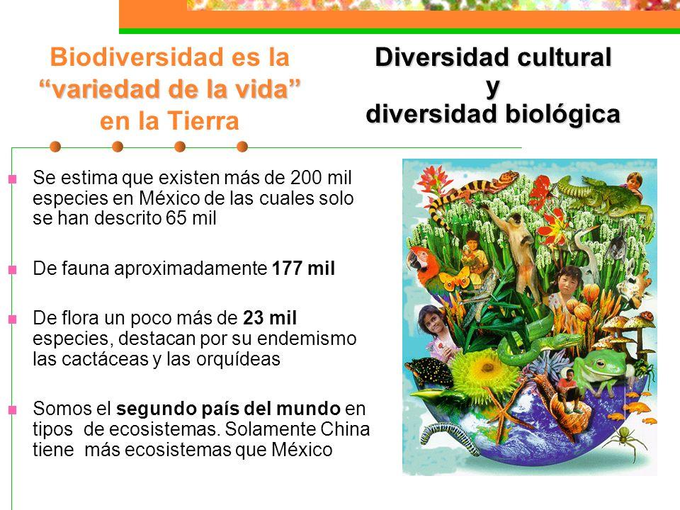 Biodiversidad es la variedad de la vida en la Tierra