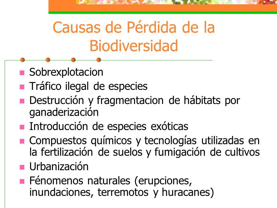 Causas de Pérdida de la Biodiversidad