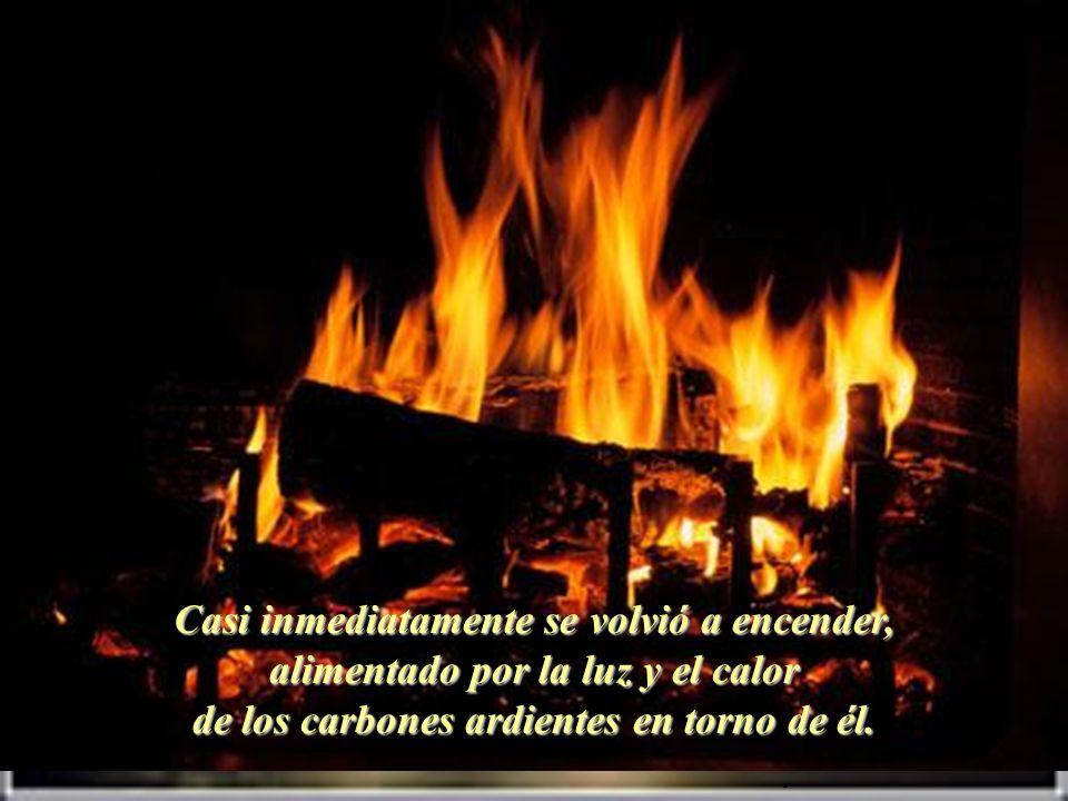 Casi inmediatamente se volvió a encender, alimentado por la luz y el calor de los carbones ardientes en torno de él.