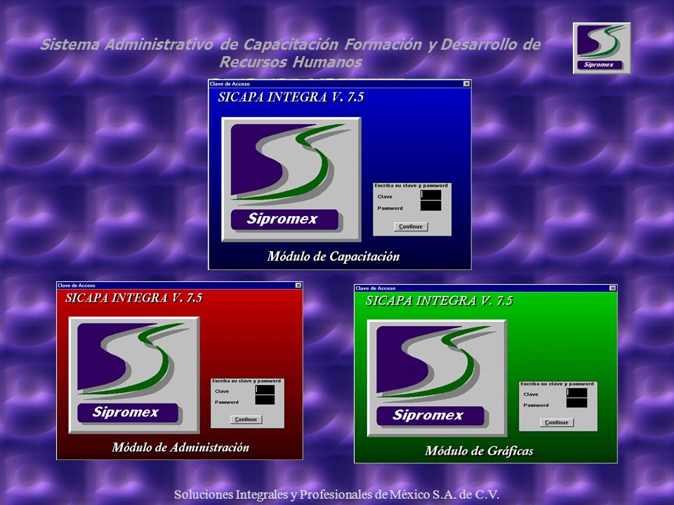 Soluciones Integrales y Profesionales de México S.A. de C.V.