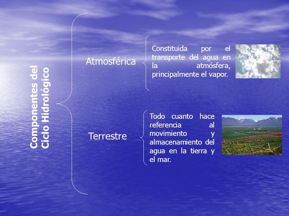 Atmosférica Componentes del Ciclo Hidrológico Terrestre