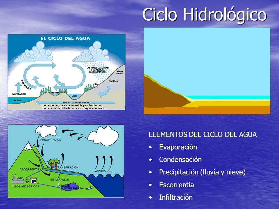 Ciclo Hidrológico ELEMENTOS DEL CICLO DEL AGUA Evaporación